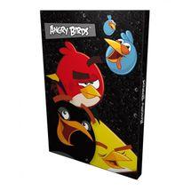 DERFORM - Box na sešity A4 Angry Birds