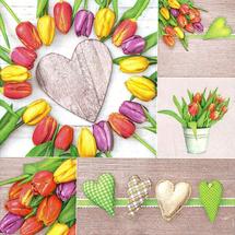 POL-MAK - Papírové ubrousky Colourful Tulips Collage