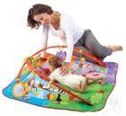 TINY LOVE - Dětský tělocvik - Move & Play