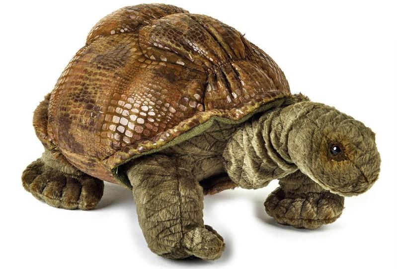 LELLY - National Geografic Zvířátka z Galapág 770802 Želva galapážských - 29 cm