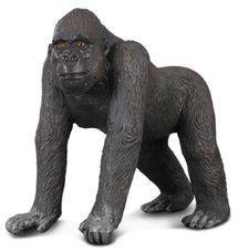 Collecte - Gorila