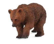 Collecte - Medvěd hnědý - mládě