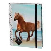 DASAO - Box na sešity A4 Kůň Beach