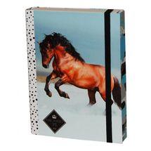 DASAO - Box na sešity A5 Kůň Snow