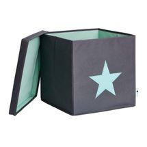 LOVE IT STORE IT - Box na hračky s krytem - šedý, zelená hvězda