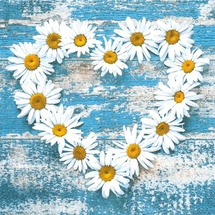 POL-MAK - Papírové ubrousky Daisy Hearts on Old Wooden Background