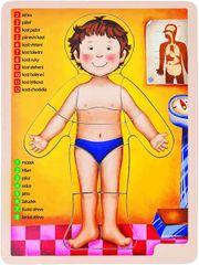 WOODY - Dřevěné puzzle anatomie - lidské tělo 90324